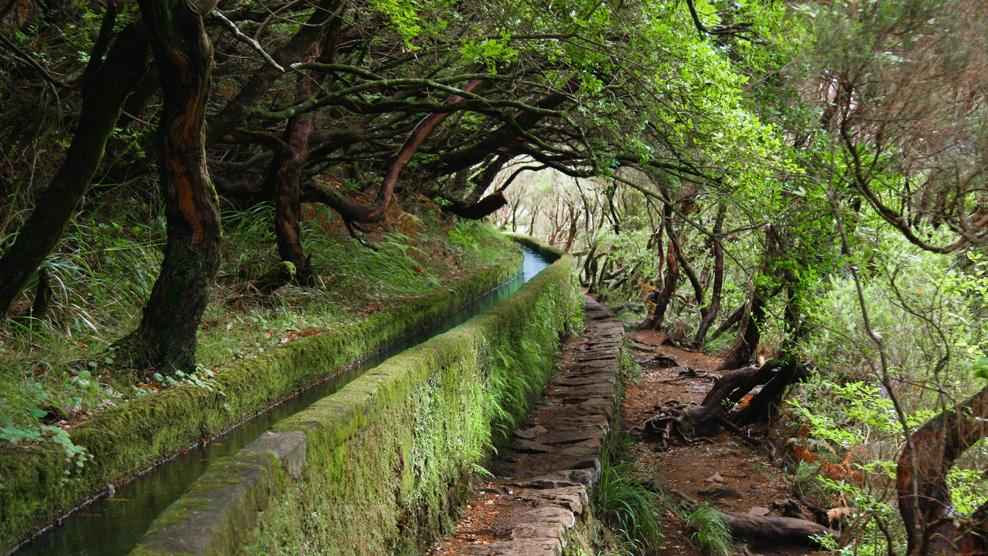 Levada-Wanderung auf Madeira