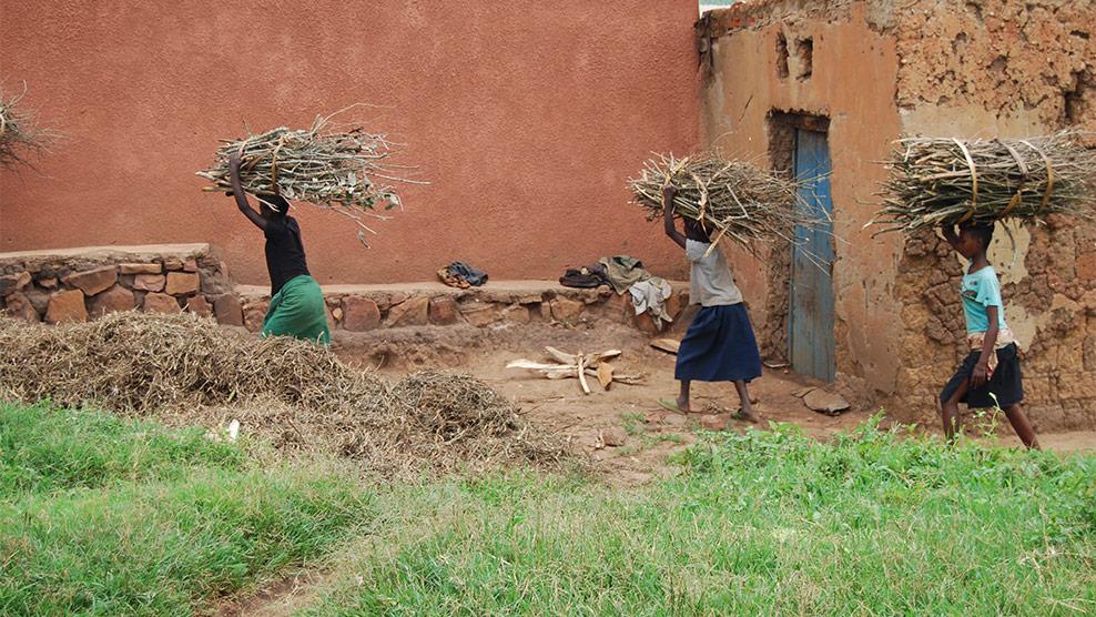 Einheimische bringen das gesammelte Feuerholz zum kochen nach Hause